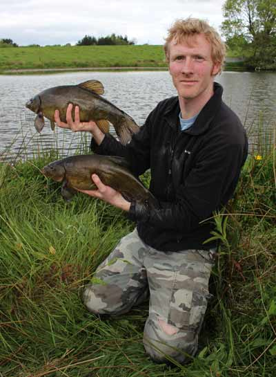 A brace of plump Irish tench.