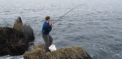 Recreational Sea Angling - No Longer the Poor Relation