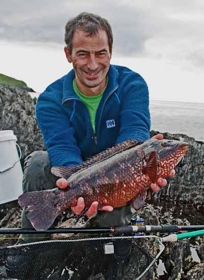 A cracking Irish wrasse for UK tourist sea angler Roger Ball.