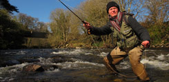 Wild Trout Fishing in Co. Wicklow