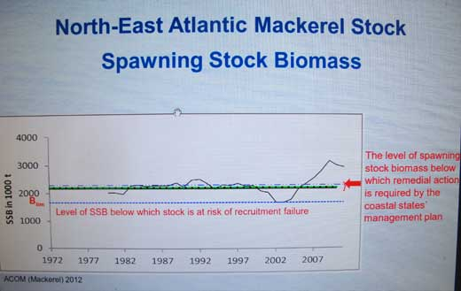 Chart illustrating the spawning stock biomass (SBB) for North East Atlantic mackerel.