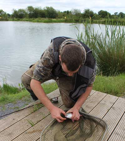 Unhooking the catch at Ardaire Springs Trout Fishery, Mooncoin, Co. Kilkenny.