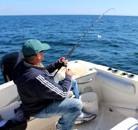 Gerry Mitchell playing a nice pollack, reef fishing off Kilmore Quay, Co. Wexford.