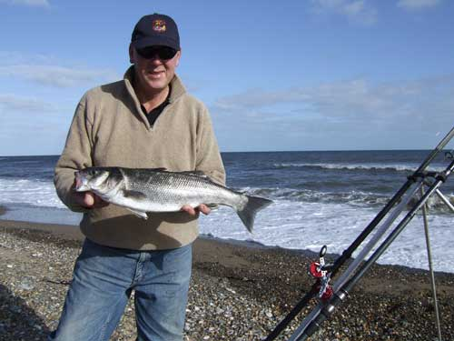 Gerry Mitchell displays a four pound beach caught Irish bass.