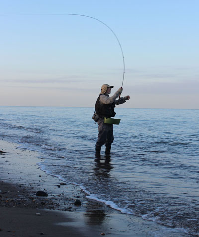 Fly fishing for bass, sea trout and mackerel off a Co. Wicklow strand.