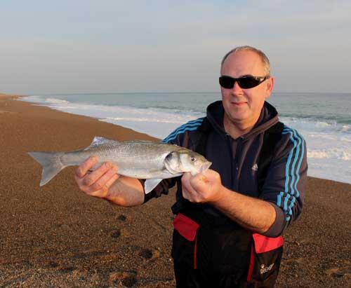 An Irish school bass for shore angler Gerry Mitchell.