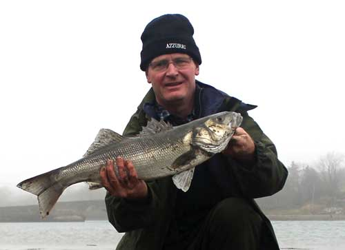 A grand estuary bass caught on peeler crab.