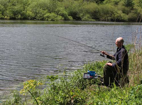 Playing a River Barrow bream, coarse fishing Co. Carlow, Ireland.