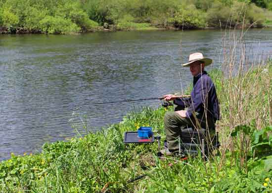 Feeder fishing, River Barrow, south east Ireland.