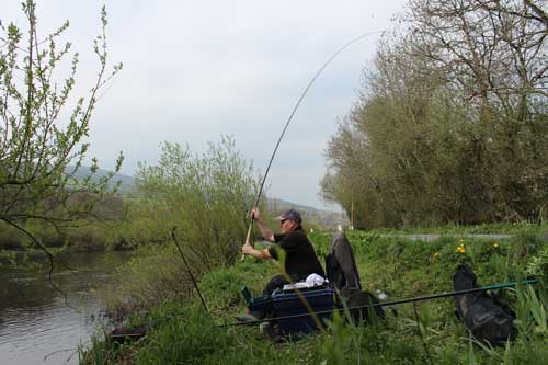 Coarse fishing, River Barrow, Ireland, 2015.