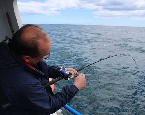 Sea fishing off Kilmore Quay, Co. Wexford, Ireland for codling, pollack and wrasse.