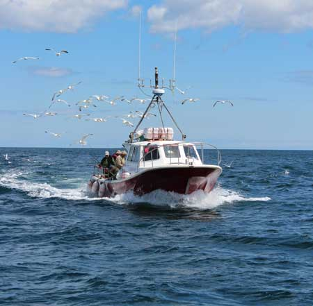Sea fishing charter boat off Kilmore Quay, Wexford, Ireland.