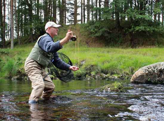 Fly fishing in County Wicklow, Ireland for wild brown trout.
