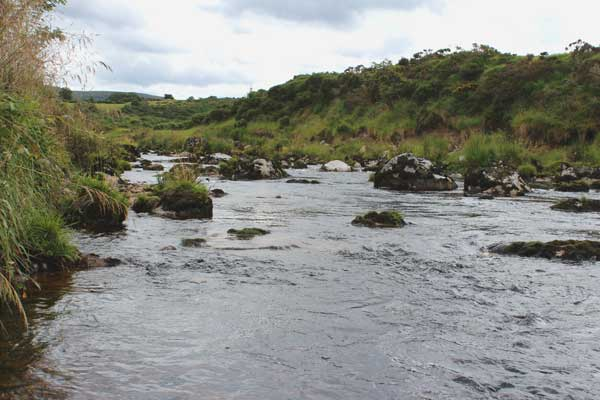 Fly fishing in Wicklow, Ireland. Typical moorland stream.