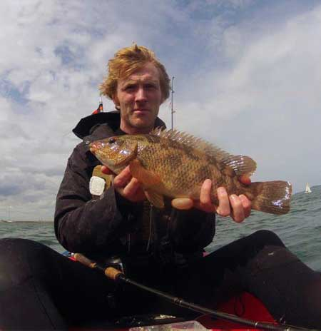 Kayak fisherman Gary Robinson displays a nice ballan wrasse (image courtesy of Gary Robinson).
