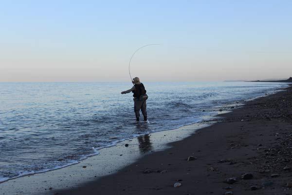 Fly fishing, Kilcoole Strand, Co. Wicklow, Ireland.