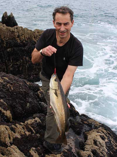 Tourist sea angler Roger Ball with a fine Beara Peninsula, Ireland, pollack.